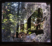 Shattered Prints - Shattered Glass Frame of Woods Print by Douglas Barnett