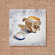 Drop Painting Posters - She Sells Sea Shells Decorative Collage Poster by Irina Sztukowski