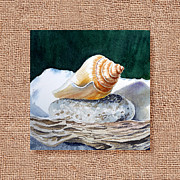 Seashell Fine Art Prints - She Sells Seashells Decorative Design Print by Irina Sztukowski