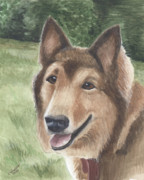 Puppy Mixed Media Originals - Sheba by Christine Winship
