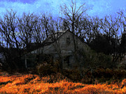 Shed Digital Art Metal Prints - Shed in Brush on Hwy 49 North of Waupaca Metal Print by David Blank