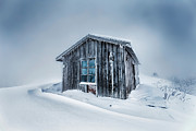 Shed Framed Prints - Shed In the Blizzard Framed Print by Evgeni Dinev