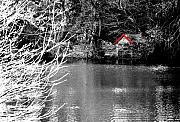 Shed Digital Art Prints - Shed on the lake Print by Christopher Rowlands