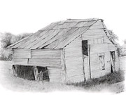 Old Shed Drawings - Shed by Sabrina  Thiel
