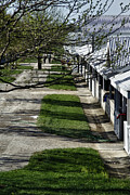 Teresa Jacobs Metal Prints - Shedrow at Keeneland Metal Print by Teresa Jacobs