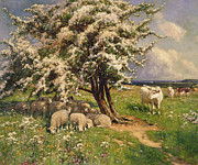 Sun Shades Posters - Sheep and cattle in a landscape Poster by Arthur Walker Redgate
