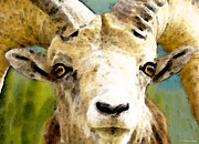 Sheep Digital Art Posters - Sheep Art - Ram Tough Poster by Sharon Cummings