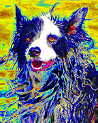 Dogs Digital Art Metal Prints - Sheep Dog 20130125v1 Metal Print by Wingsdomain Art and Photography