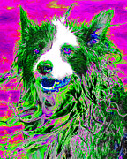 Dogs Digital Art Metal Prints - Sheep Dog 20130125v2 Metal Print by Wingsdomain Art and Photography