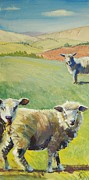 Quirky Posters - Sheep in Devon Poster by Mike Jory