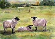 Suzanne Krueger - Sheep in the Meadow