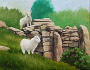 Ewes Originals - Sheep on a rock wall by Hilary England