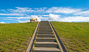 Flight Of Stairs Posters - Sheep on a stairway in summer Poster by Jan Marijs