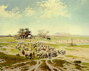 Covered Wagon Posters - Sheepherding Montana Poster by Olaf Seltzer