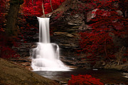 David Simons Art - Sheldon Reynolds Waterfalls by David Simons