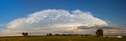 Lightning Gifts Posters - Shelf Cloud Mamacumulus Leading Edge  Poster by James Bo Insogna