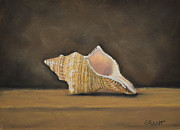 Shell Art Pastels Framed Prints - Shell Framed Print by Joanne Grant