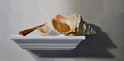 Jorge  Alberto Gonzalez - Shells on a shelf