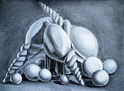 Ball Drawings Posters - Shells Shells And Balls Still Life Poster by Irina Sztukowski