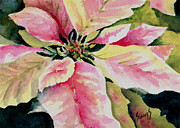 Christmas Flower Paintings - Shellys Poinsettia by Sam Sidders