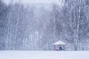 Wintry Posters - Shelter In The Storm - Featured 3 Poster by Alexander Senin