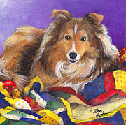 Sable Sheltie Posters - Sheltie on quilt Poster by Terry Albert