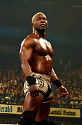 Shelton Framed Prints - Shelton Benjamin Framed Print by Wrestling Photos