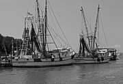 Water Vessels Photo Prints - Shem Creek Shrimpers - Black and White Print by Suzanne Gaff