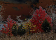 Carolyn Stagger Cokley Metal Prints - Shenandoah Autumn Metal Print by Carolyn Stagger Cokley