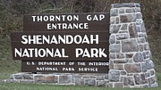 Wendy  Beatty - Shenandoah National Park...