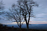 Carolyn Stagger Cokley Metal Prints - Shenandoah Sunset Metal Print by Carolyn Stagger Cokley