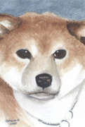Puppy Mixed Media - Shiba Inu by Christine Winship