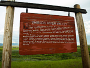 Tara Lynn - Shields River Valley Sign