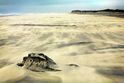Shifting Sands On Ocracoke Outer Banks Print by Dan Carmichael