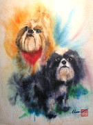Shihtsu Prints - Shih tsu siblings Print by Alan Goldbarg