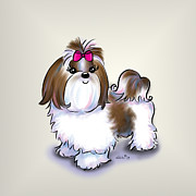 Shihtzu Prints - Shih Tzu Beauty Print by Catia Cho