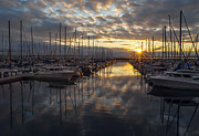 Puget Sound Art - Shilshole Marina Sunstar by Mike Reid