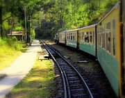Salman Ravish - Shimla Train