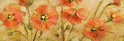 Floral Art Paintings - Shimmering Poppies by Jen Norton