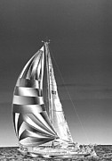Sharon McLain - Shimmering Sailboat