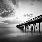 Lisa McStamp - Shimmering Shore