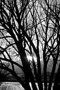 James BO  Insogna - Shine A Little Light On Me BW