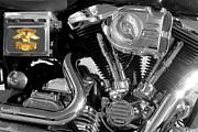 Dorothy Menera - Shine On Harley Davidson