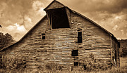 Tin Roof Prints - Shingle Barn Sepia 1 Print by Douglas Barnett