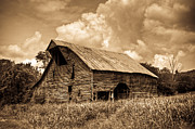 Tin Roof Prints - Shingle Barn Sepia 2 Print by Douglas Barnett