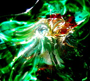 Handmade Glass Flower Glass Art - Shining Through the Glass II by Kitrina Arbuckle