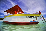 Pleasure Photos - Shomara of Aruba II by David Letts