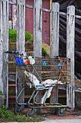 Cart Photo Prints - Shopping Cart Print by Peter Tellone