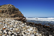 Western Cape Framed Prints - Shore at Cape of Good Hope Framed Print by Sami Sarkis