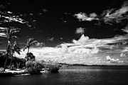 Islamorada Prints - Shoreline And Coastal Views Islamorada Florida Keys Usa Print by Joe Fox